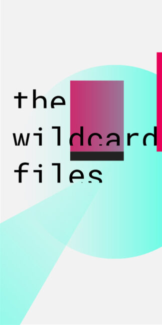 wildcard-files_900